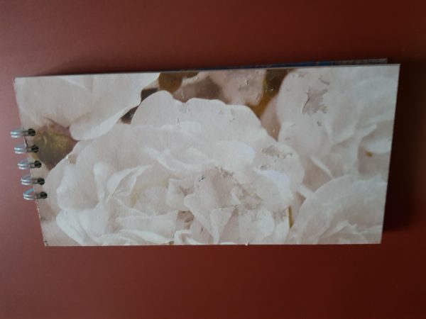 Detalle contra portada libreta rosas blancas