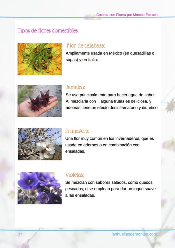 Cocinar con pétalos de flores por Montse Estruch pagina 17 - flores comestibles