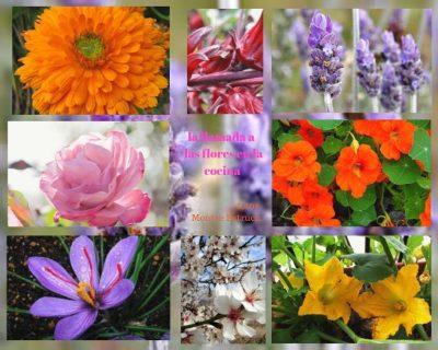 la llamada de las flores